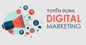 Tuyển gấp nhân viên Digital Marketing