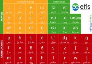 học phát âm 44 âm trong tiếng Anh